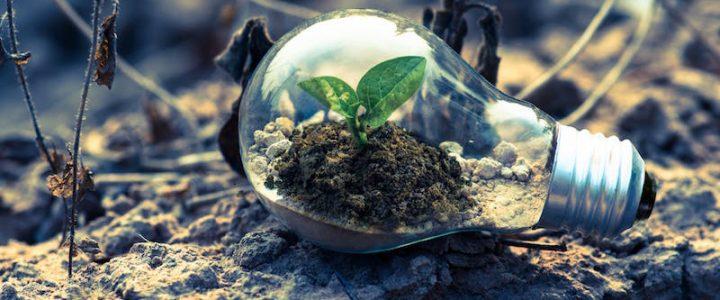 Digital e green economy, i settori del lavoro di domani